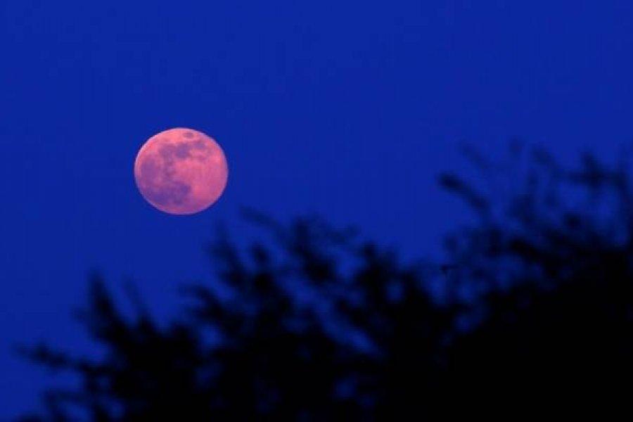 Esta noche se podrá apreciar la Superluna Rosa