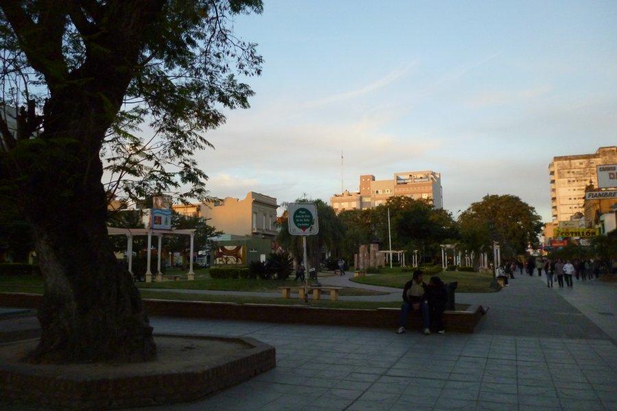 Los escritores correntinos piden una sede en la plaza Vera