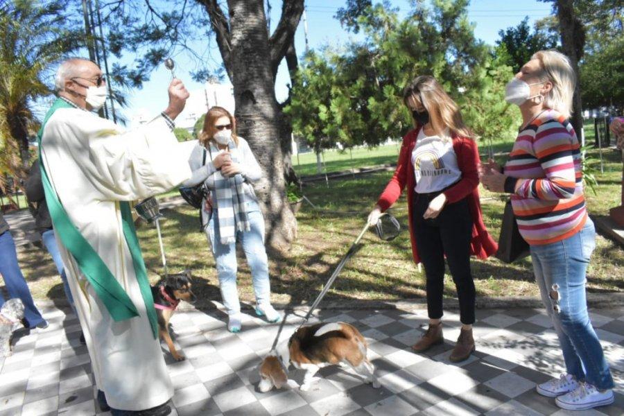 Bendijeron a las mascotas por el día del animal
