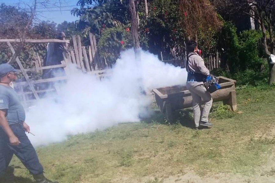 Corrientes registró ocho nuevos casos de Dengue