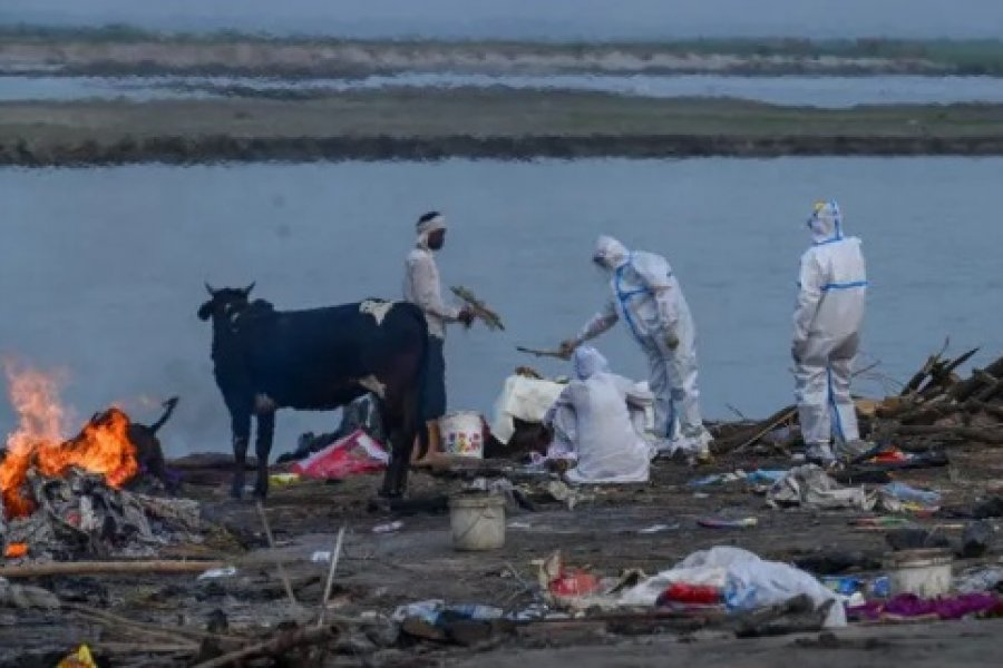 El dramático relato de un argentino sobre la crisis sanitaria en India: Esto es una catástrofe
