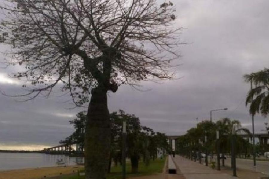 Cielo parcialmente nublado en Corrientes