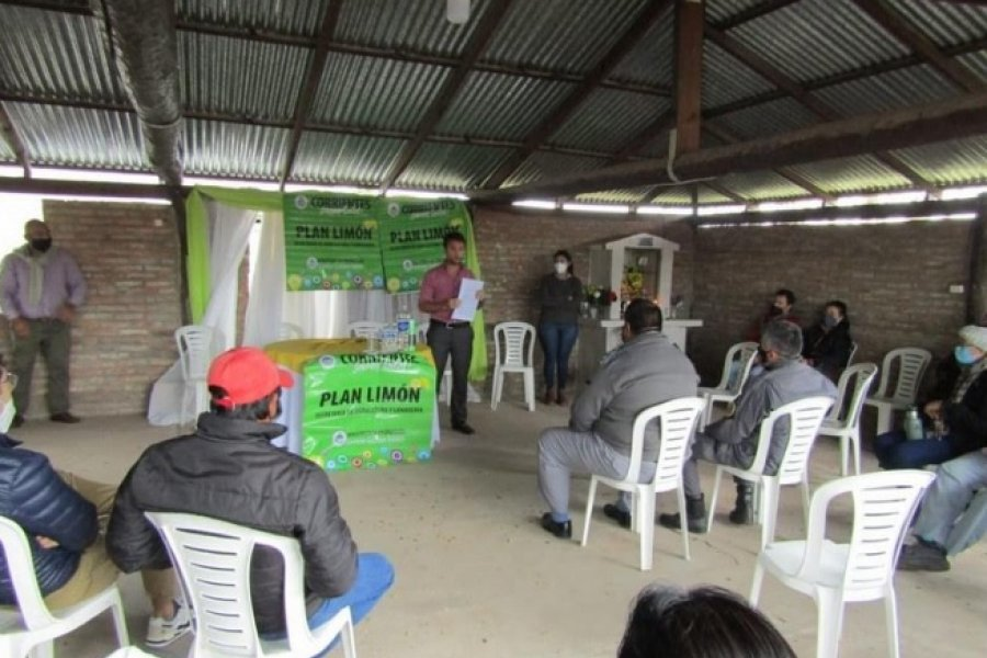 Plan Limón: San Luis del Palmar marcó el creciente interés de productores en sumarse al programa provincial