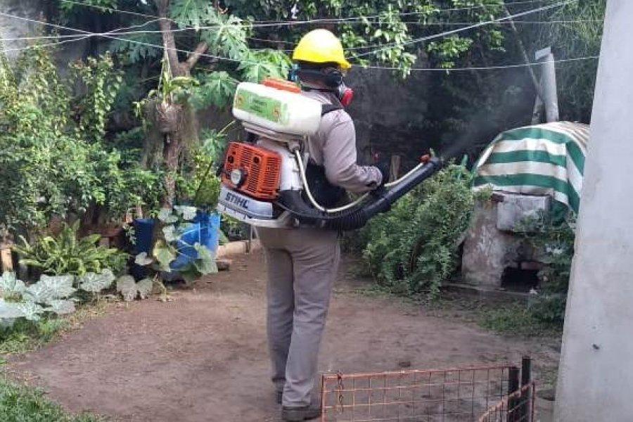 Ya son 31 los casos de Dengue en Corrientes