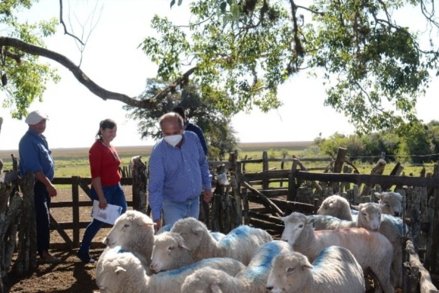 Mercedes: El Intendente recorrió zona rural creando futuro en la producción