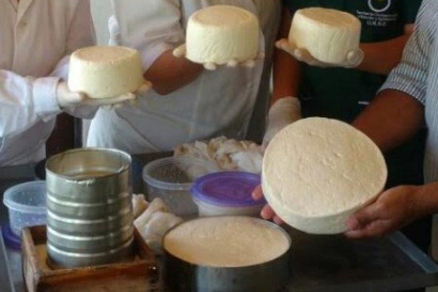 Quesos artesanales: Incrementarán la producción local con mayor calidad e inocuidad