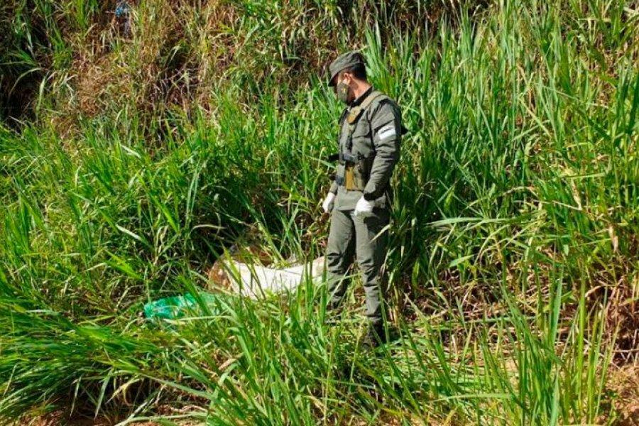 Misiones: Descubren más de 55 kilos de marihuana a orillas del Río Paraná