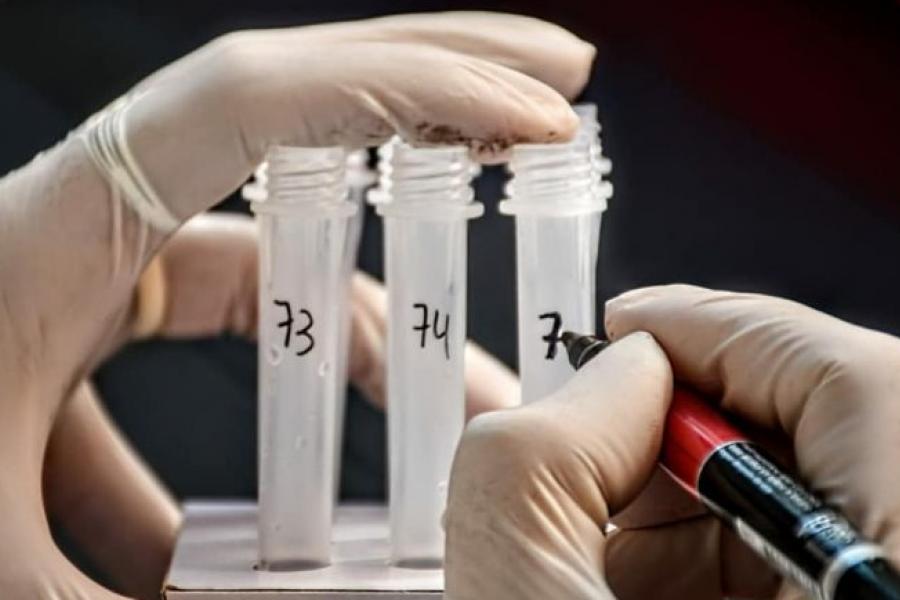 Coronavirus en Chaco: Reportaron otras 23 muertes