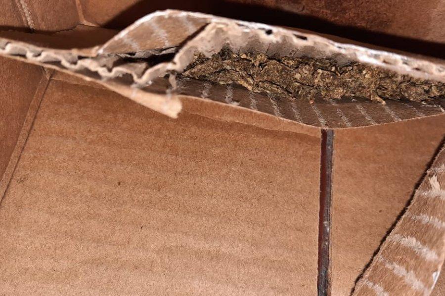 Una mujer intentó ingresar a una comisaría con droga escondida en una caja