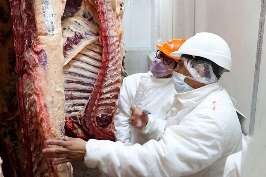 El Gobierno anuncia un Plan Ganadero y un nuevo esquema exportador de carne