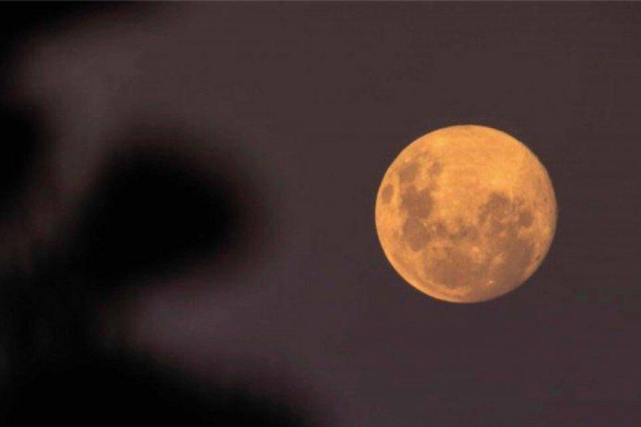 Luna de Fresa: cómo verla desde Argentina