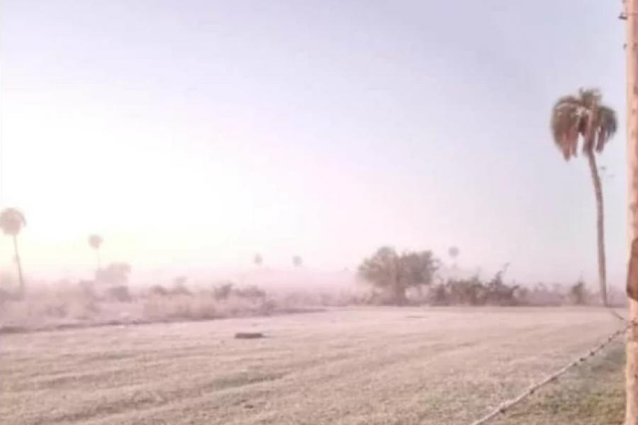 Heladas en Corrientes: Los campos amanecieron con escarcha