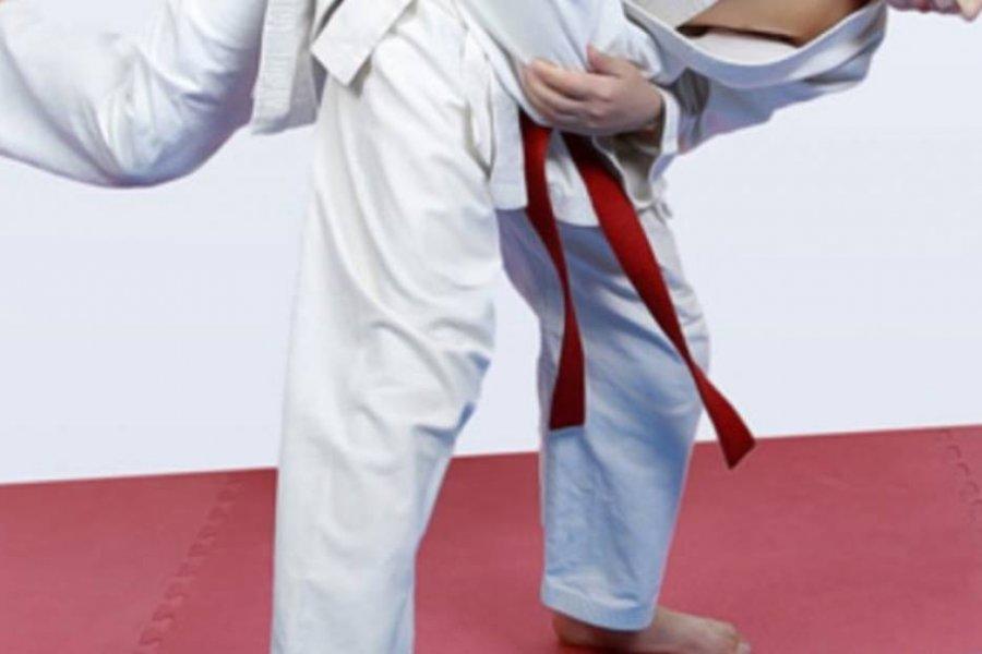 Murió un nene de 7 años que fue lanzado 27 veces al suelo en una clase de judo