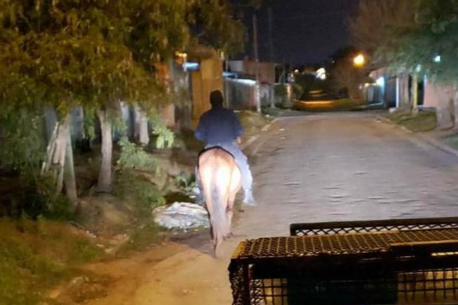 A caballo quiso robar un foco
