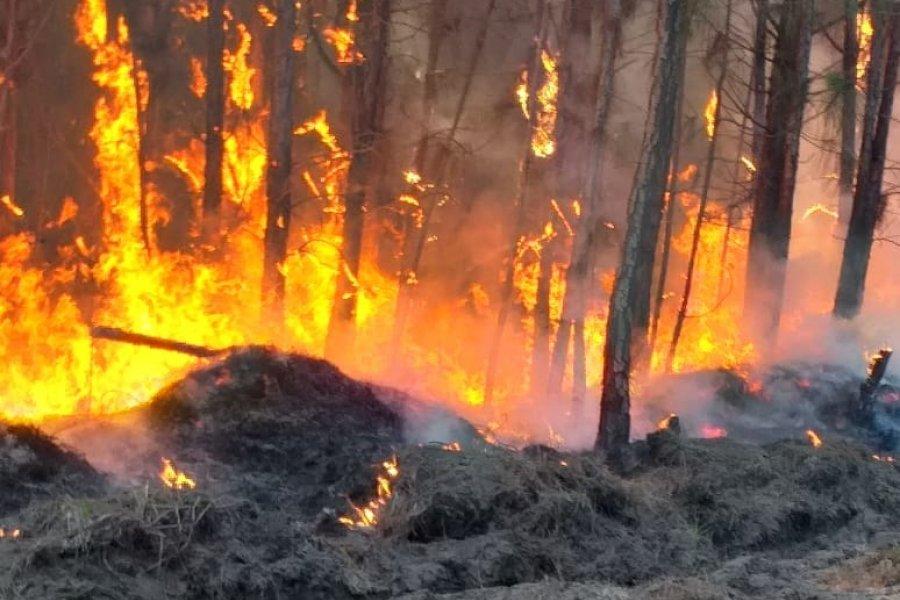 Informan sobre las acciones preventivas para evitar incendios