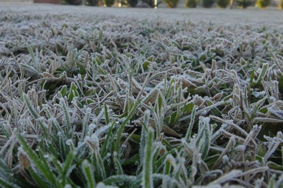 Frío en Corrientes: Tremenda helada en zona rural de Goya