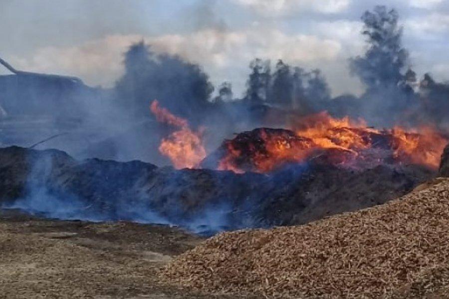 Preocupa quema de aserrín de aserraderos en la ciudad