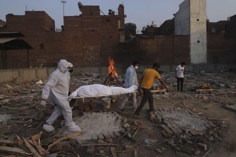 """""""Hongo negro"""" en la India: más de 4300 muertos y 45.000 casos de mucormicosis"""