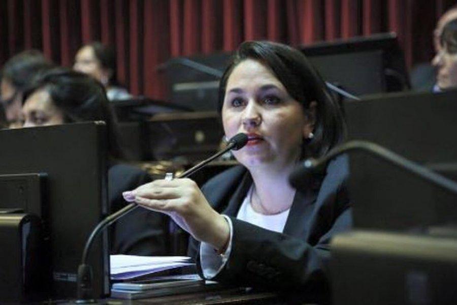 Camau Espínola y Ana Almirón serán candidatos a senadores nacionales