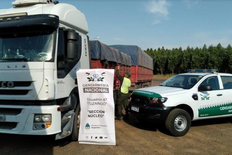 Corrientes: Decomisan 196 toneladas de soja que eran trasladados en siete camiones