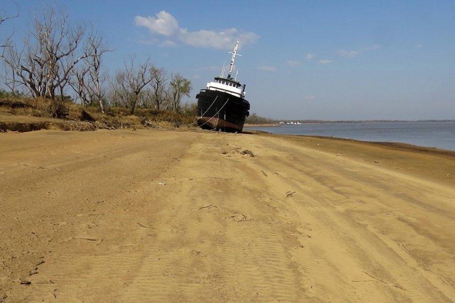 Estudian cómo impacta la bajante del río Paraná en el agro y en el ambiente
