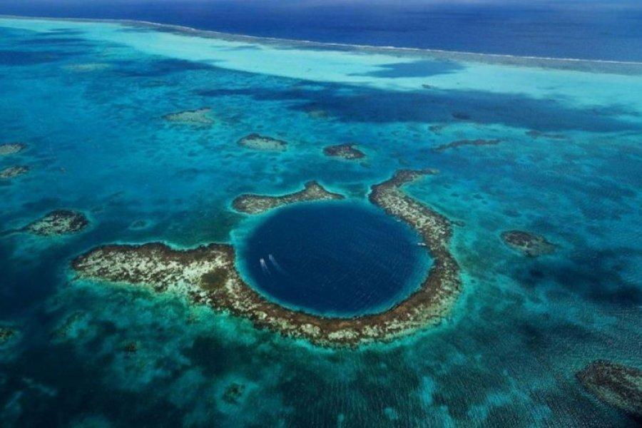 Increíble hallazgo de virus gigantes en el lugar más profundo de la Tierra