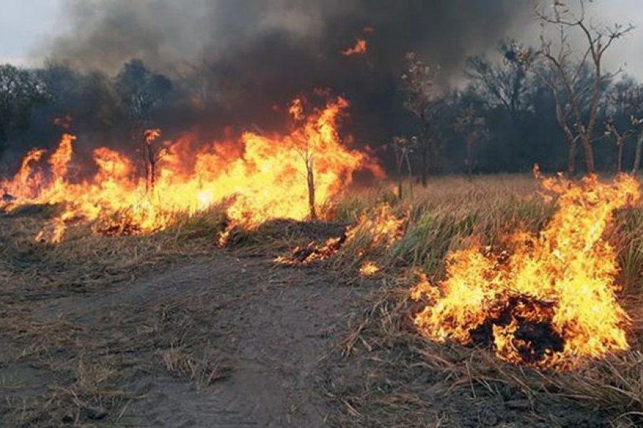 Corrientes: Advierten olor y cenizas por quemas desde Chaco