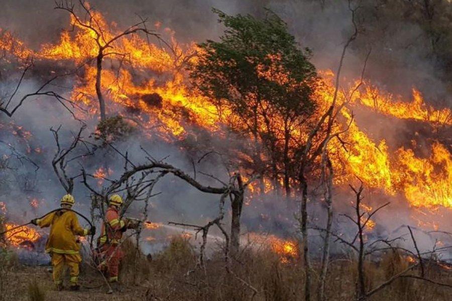 La sequía enciende las alarmas por riesgo de incendios forestales