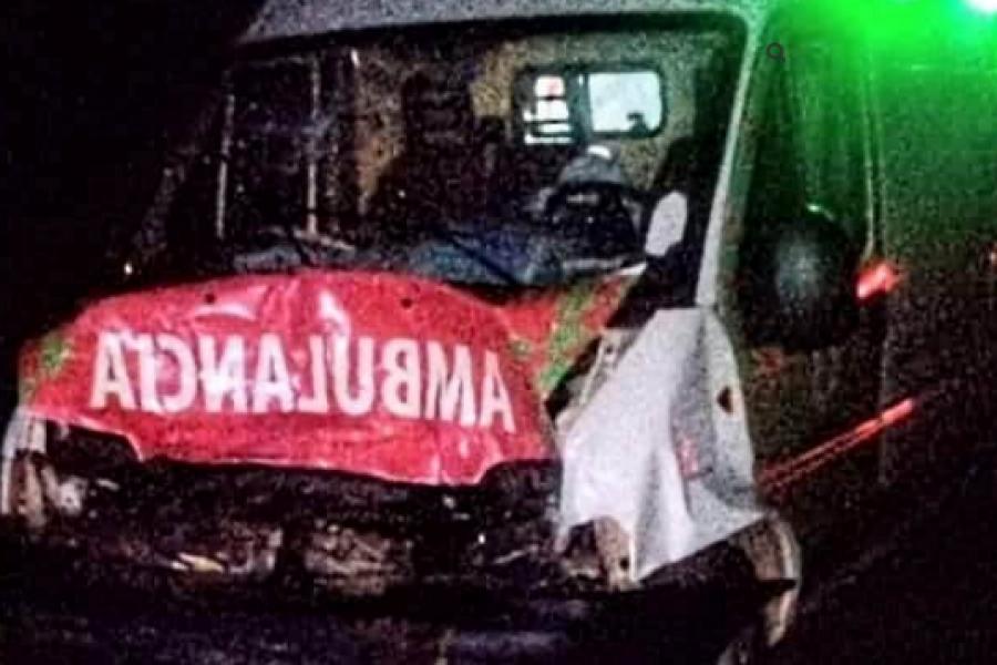 Una ambulancia chocó una vaca en la Ruta 12: Trasladaba a un niño a Capital