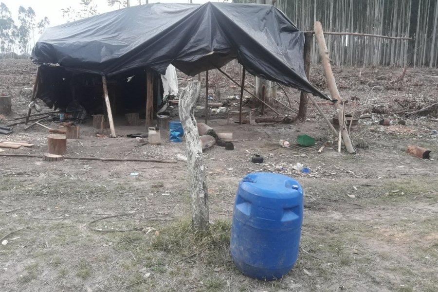 Entre Ríos: Rescataron a 14 víctimas de explotación laboral