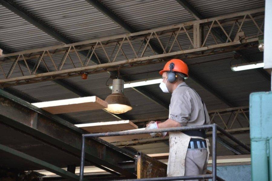 Corrientes: Créditos blandos de hasta 10 millones de pesos para los proyectos de pymes foresto industriales