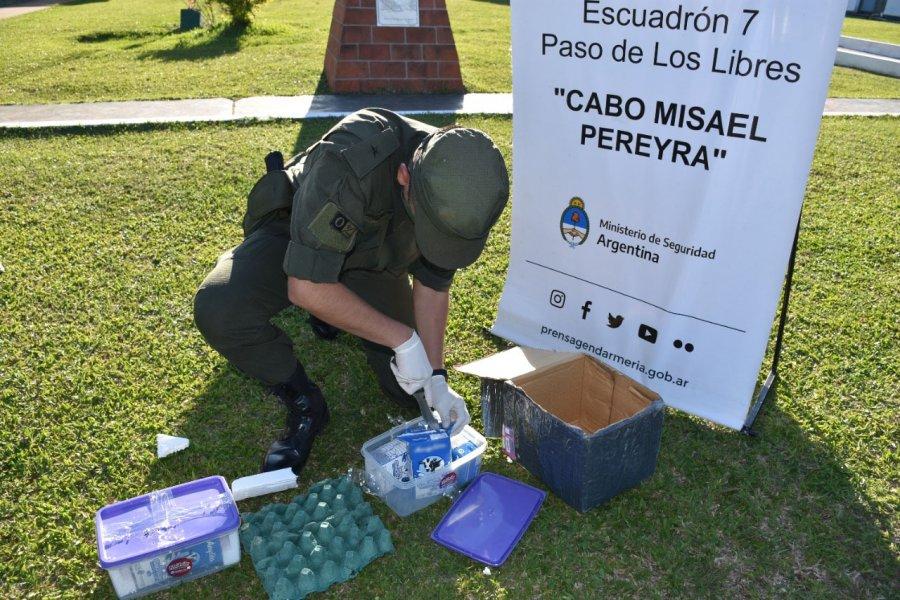 Corrientes: Descubren 2 kilos de marihuana dentro cartones de leche