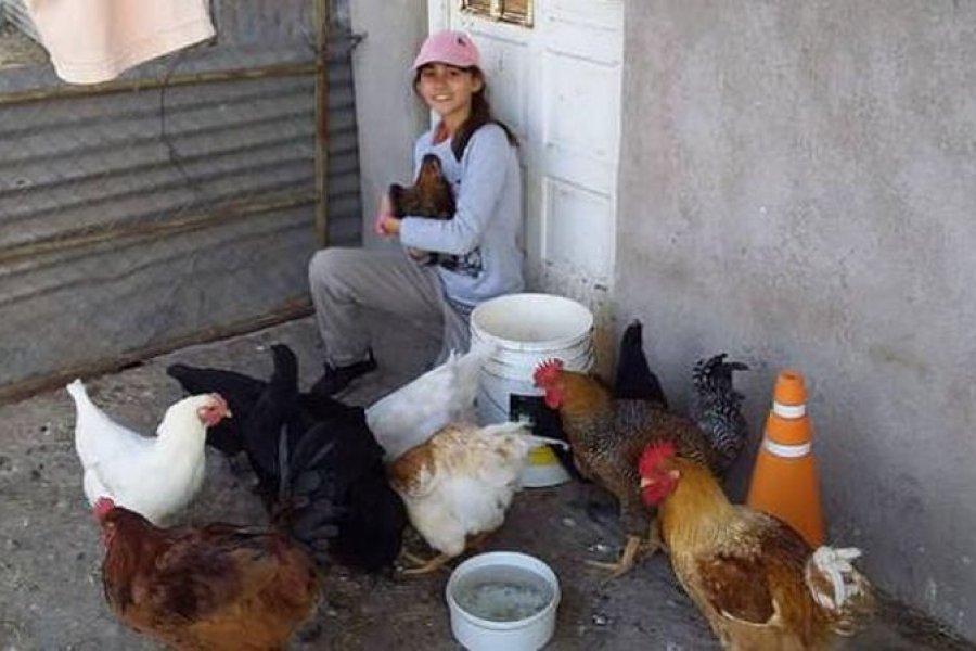 Tiene 14 años, vende huevos y pasó de tener 10 gallinas a 800