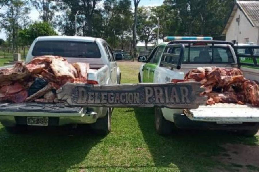 Incautaron más de 800 kilos de carne no aptas para el consumo humano