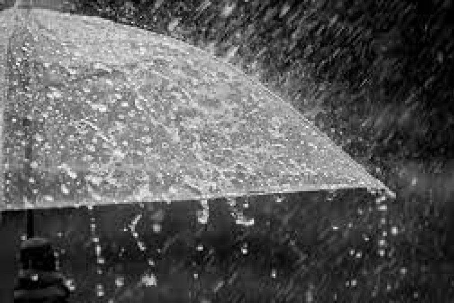 Precipitaciones: Informe especial del Servicio Meteorológico Nacional al COHIFE