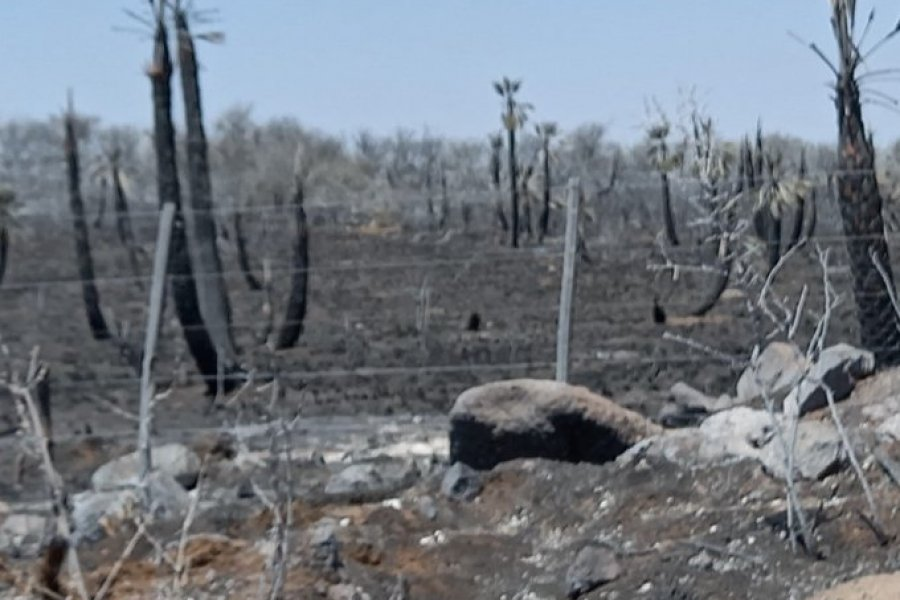 Córdoba: Focos contenidos y con guardias para evitar el reinicio de los incendios