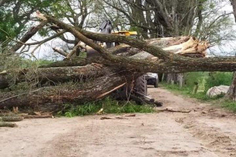 Varias localidades correntinas siguen sin energía tras la tormenta
