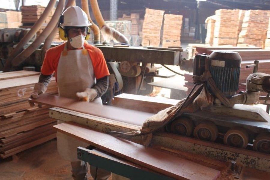 Corrientes es la provincia del NEA que más creció en exportaciones