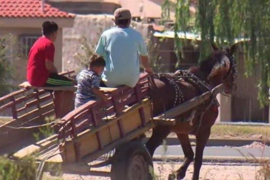 Acercan al Municipio de Corrientes propuesta para sustituir los carros de Tracción a Sangre