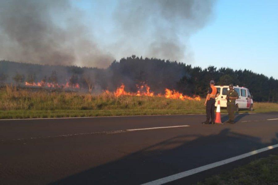 Corrientes: Impactantes imágenes de un nuevo incendio forestal